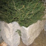 harvest gold limestone extremely large tumbled corner