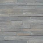 tigerstripe limestone sawn height low rise closeup